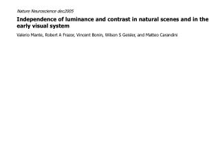 Independence of luminance and contrast in natural scenes and in the early visual system