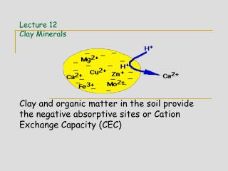 Lecture 12 Clay Minerals