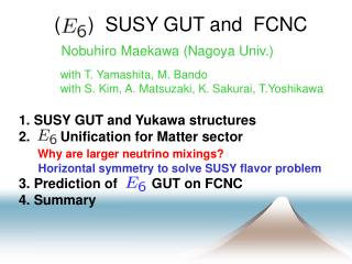 (     )  SUSY GUT and  FCNC