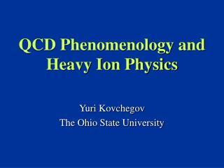 QCD Phenomenology and Heavy Ion Physics