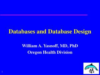 Databases and Database Design