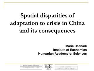 Spatial disparities of adaptation to crisis in China and its consequences