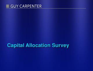Capital Allocation Survey