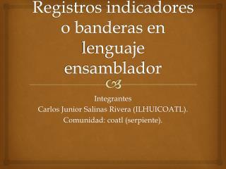 Registros indicadores o banderas en lenguaje ensamblador