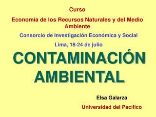 Curso Economía de los Recursos Naturales y del Medio Ambiente