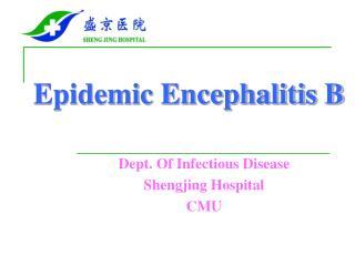 Epidemic Encephalitis B