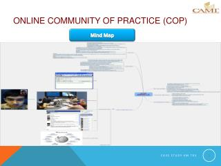 ONLINE COMMUNITY OF PRACTICE ( CoP )