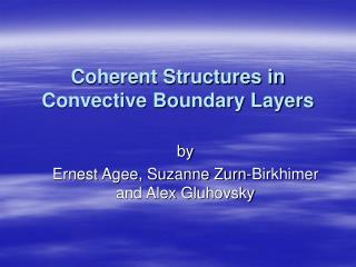 Coherent Structures in Convective Boundary Layers