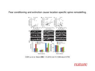 CSW Lai  et al .  Nature 000 ,  1 - 5  (2012) doi:10.1038/nature10792