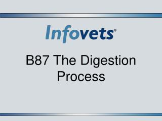 B87 The Digestion Process