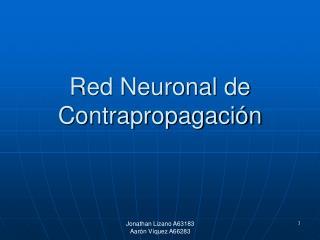 Red Neuronal de Contrapropagación