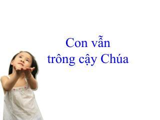 CON V?N TR�NG C?Y
