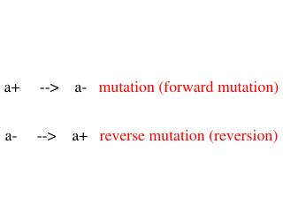 a+     -->    a-    mutation (forward mutation)