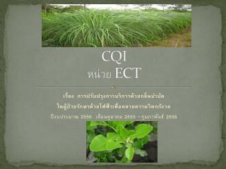 CQI หน่วย  ECT
