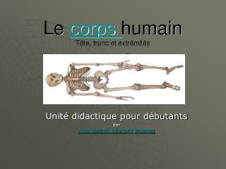Le  corps  humain Tête, tronc et extrémités