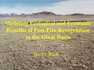 Modeling Ecological and Economic Benefits of Post-Fire Revegetation in the Great Basin