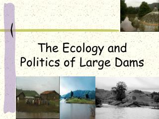 The Ecology and Politics of Large Dams