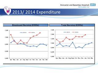 2013/ 2014 Expenditure