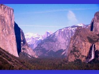 Vegetation Types in Yosemite Valley