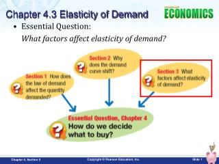 Essential Question:   What factors affect elasticity of demand?