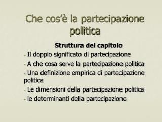 Che cos'è la partecipazione politica