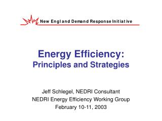 Energy Efficiency: Principles and Strategies
