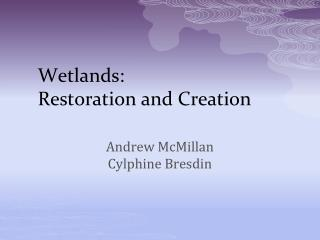 Wetlands: Restoration and Creation