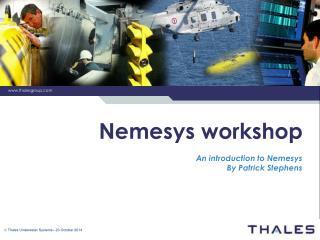Nemesys workshop