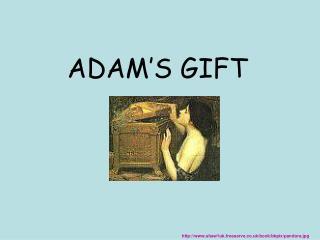 ADAM'S GIFT
