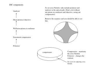 Analyser Shear prism at objective Wollaston prism at condenser Senormont compensator Polarizer