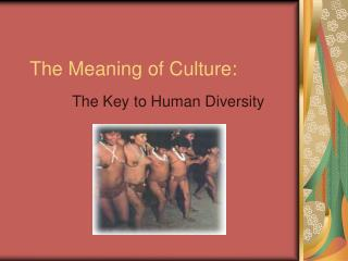 The Meaning of Culture: