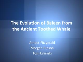 The Evolution of Baleen from the Ancient Toothed Whale