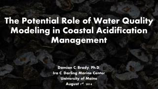 The Potential Role of Water Quality Modeling in Coastal Acidification Management