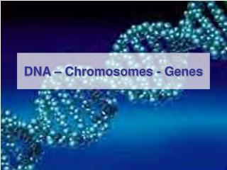 DNA – Chromosomes - Genes