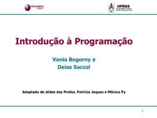 Introdução à Programação Vania Bogorny e Deise Saccol