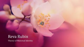 Reva Rubin