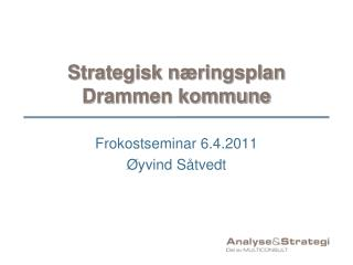 Strategisk næringsplan Drammen kommune