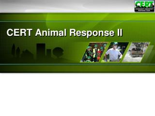 CERT Animal Response II