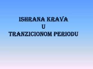 ISHRANA KRAVA U TRANZICIONOM PERIODU
