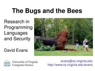 Research in Programming Languages and Security David Evans