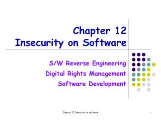 Chapter 12 Insecurity on Software