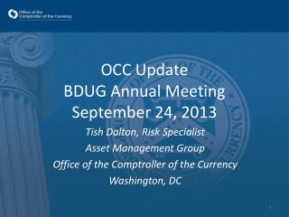OCC Update  BDUG Annual Meeting September 24, 2013