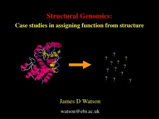 Structural Genomics: Case studies in assigning function from structure