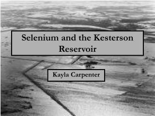 Selenium and the Kesterson Reservoir