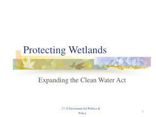 Protecting Wetlands
