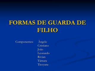 FORMAS DE GUARDA DE FILHO