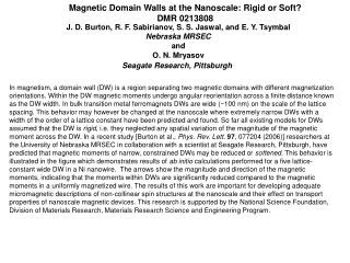 Magnetic Domain Walls at the Nanoscale: Rigid or Soft? DMR 0213808
