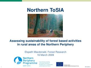 ToSIA approach to Sustainability Impact Assessment of Forest-Wood Chains