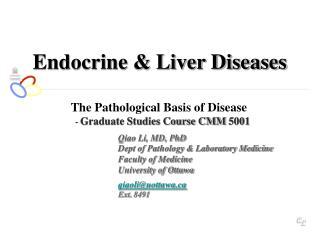 Endocrine & Liver Diseases