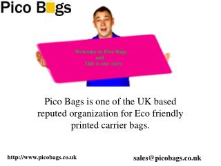 Online Carrier Bag Shop for Colorful Printed bags